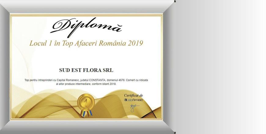 Magazine Online, Ambalaje de Flori si Accesorii de Flori